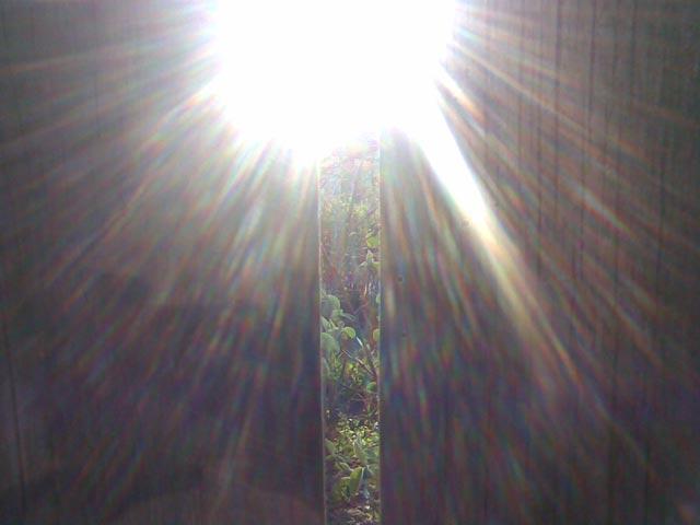 Солнце сквозь забор