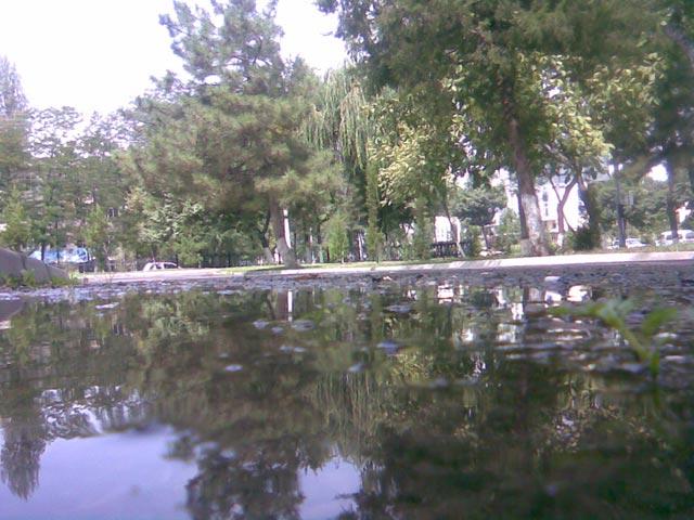 Отражение парка