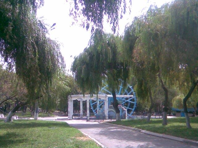 колесо в парке