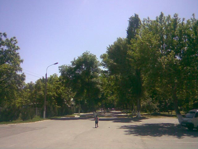 Парк днем