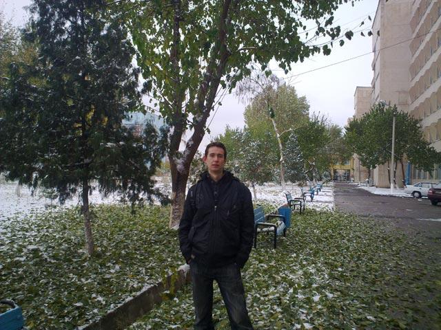 я под опадающим деревом
