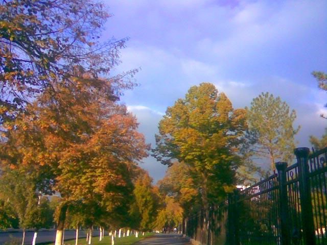 По дороге домой