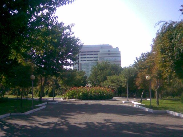 Клумба возле гостиницы