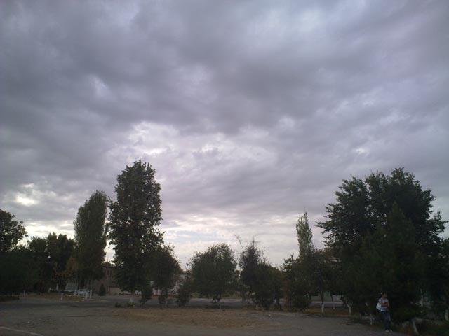 Облака над деревьями