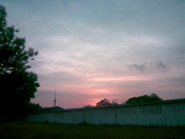 Приятный закат над деревьями