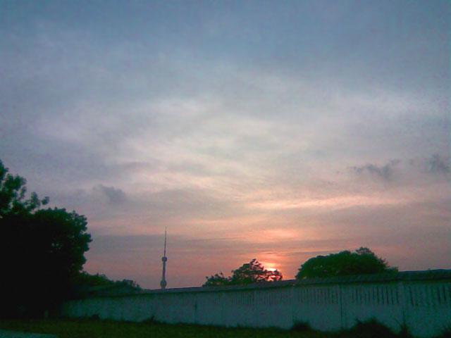 Закат над деревьями