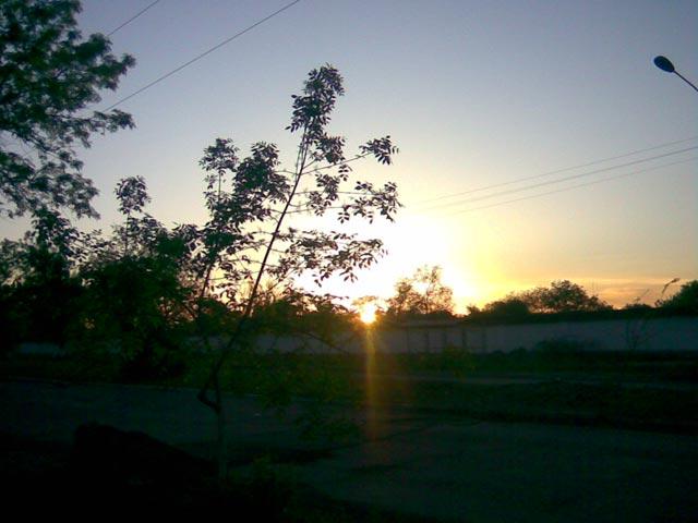 Луч солнца сквозь дерево - эпизод 2
