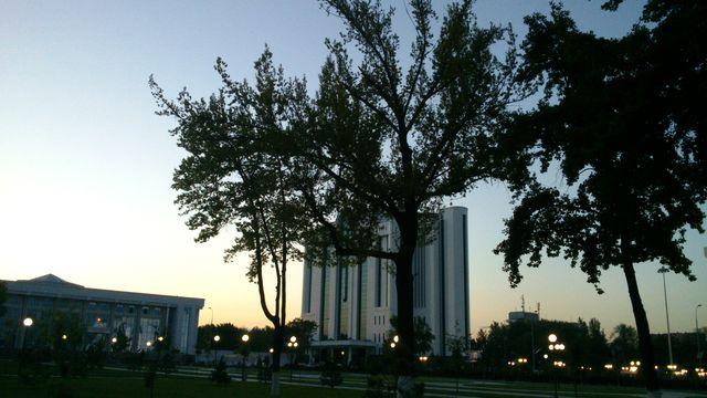 Центр города - дерево и банк