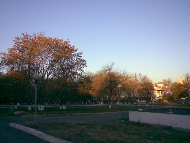 Парк утром