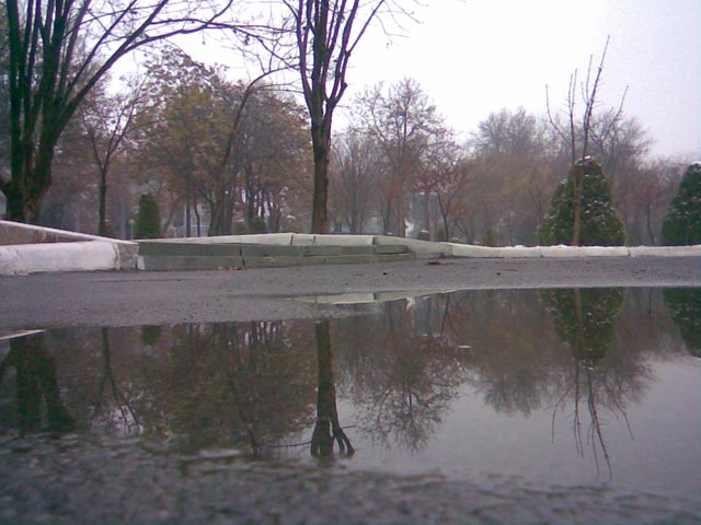 Отражение в парке
