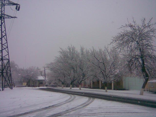Утро и снег