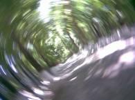Эффект кручения с деревом