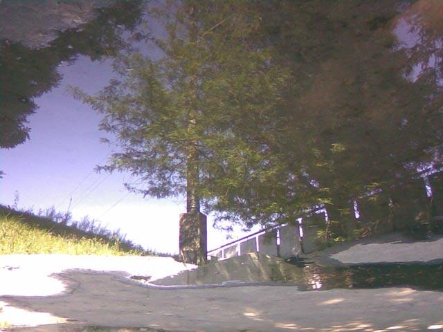 перевернутое фото отражения в воде