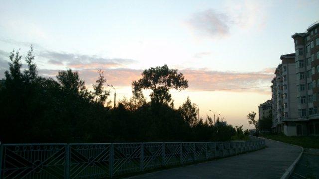 Красивое небо и дерево