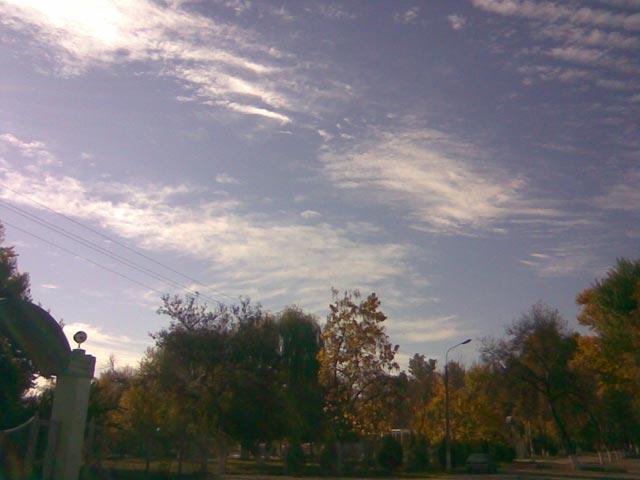 Облака над парком