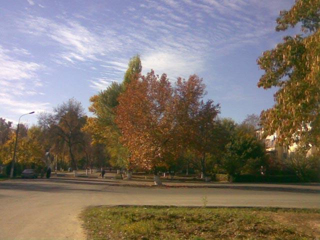 Фото парка - красиво