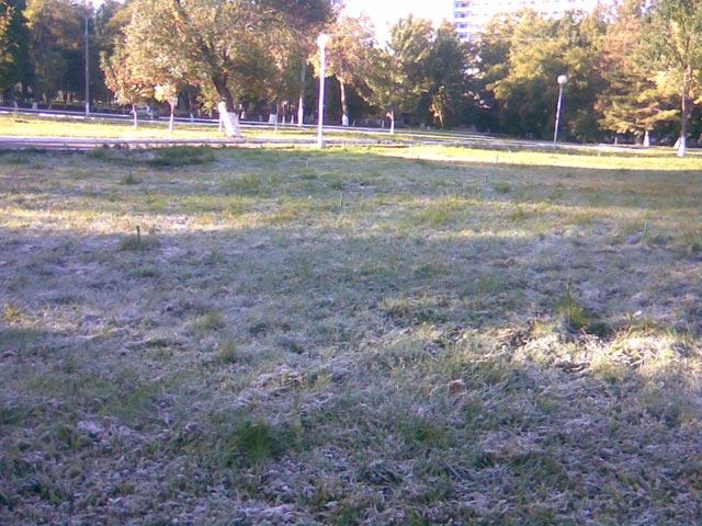 Иней на траве