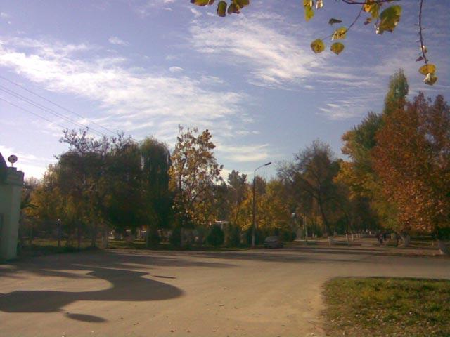Оранжевый парк