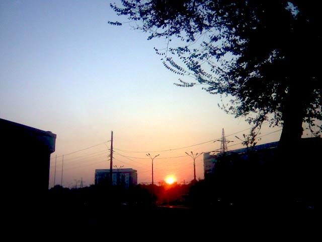 Яркий диск солнца