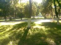 парк недалеко от дома